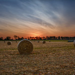 Sunrise at cornfield in the fall Miami County Ohio by Dan Cleary of Cleary Ceative Photography in Dayton Ohio